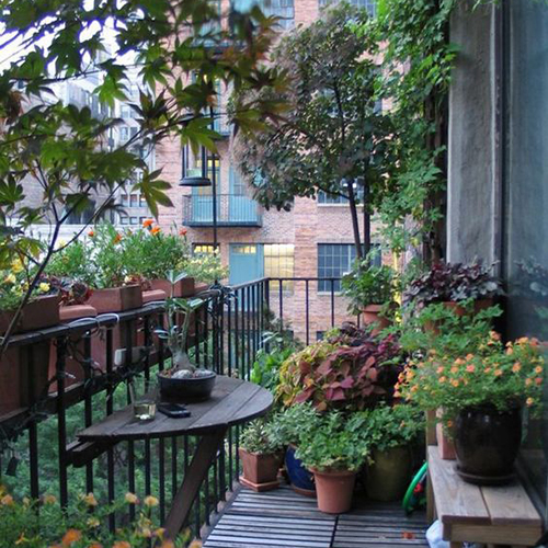 jungle urbaine aménagement balcon fer forgé