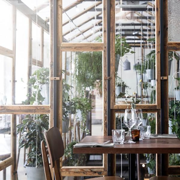 noesis-kia-ora-vegetal-concept-cuisine